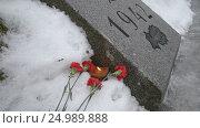 Купить «Горящая свеча в хлебе и красные гвоздики рядом с памятной плитой на Пискаревском мемориальном кладбище. Санкт-Петербург», видеоролик № 24989888, снято 28 января 2017 г. (c) Румянцева Наталия / Фотобанк Лори