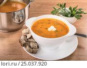 Купить «Cream of pumpkin in a plate and in a pan on the table», фото № 25037920, снято 25 ноября 2016 г. (c) Анастасия Богатова / Фотобанк Лори