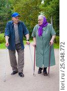Пожилая пара на прогулке в парке. Стоковое фото, фотограф Николай Лемешев / Фотобанк Лори