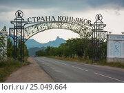 Decorative gates at the entrance to the country of cognacs Koktebel in Crimea (2010 год). Редакционное фото, фотограф Олег Жуков / Фотобанк Лори