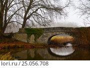 Каменный мост. Стоковое фото, фотограф Максим Попыкин / Фотобанк Лори