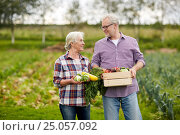 Купить «senior couple with box of vegetables on farm», фото № 25057092, снято 25 августа 2016 г. (c) Syda Productions / Фотобанк Лори