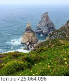 Купить «Atlantic coast view in cloudy weather, Portugal.», фото № 25064096, снято 17 мая 2016 г. (c) Юрий Брыкайло / Фотобанк Лори