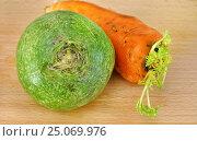 Купить «Свежие овощи. Морковка  и зелёная редька», эксклюзивное фото № 25069976, снято 5 февраля 2017 г. (c) Dmitry29 / Фотобанк Лори