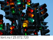 Купить «Светофор», фото № 25072720, снято 23 августа 2016 г. (c) Дмитрий Сидоров / Фотобанк Лори