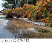 Купить «Germany, Mecklenburg-Western Pomerania, Western Pomerania Lagoon Area National Park, Storm at West beach of Darss», фото № 25076412, снято 13 октября 2016 г. (c) mauritius images / Фотобанк Лори