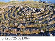 Купить «Каменный лабиринт Соловецкого острова», фото № 25081064, снято 27 июля 2013 г. (c) Лариса Вишневская / Фотобанк Лори