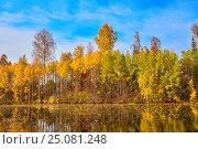 Autumn, yellow trees, water. Стоковое фото, фотограф Сергей Семенович Мальков / Фотобанк Лори