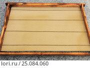 Рамка с вощиной. Стоковое фото, фотограф Денис Кошель / Фотобанк Лори