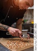 Купить «Male cook cracking caramelized almonds, closeup», фото № 25087960, снято 15 января 2017 г. (c) Pavel Biryukov / Фотобанк Лори