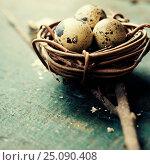Купить «Easter eggs and nest on wooden background», фото № 25090408, снято 18 февраля 2016 г. (c) Наталия Кленова / Фотобанк Лори