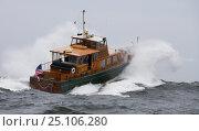 "Купить «Classic powerboat ""Pearl Necklace"" crashing through rough swell in Newport, Rhode Island, USA.», фото № 25106280, снято 20 сентября 2018 г. (c) Nature Picture Library / Фотобанк Лори"