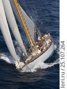 "Купить «Classic superyacht ""Mariquita"" arriving from Cannes to Saint Tropez, France, for Les Voiles de Saint Tropez, October 2006.», фото № 25107264, снято 19 января 2020 г. (c) Nature Picture Library / Фотобанк Лори"
