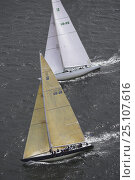 """Купить «12 Metres """"Freedom"""" and """"Courageous"""" racing at the 12 Metre World's Competition 2005, Newport, Rhode Island, USA.», фото № 25107616, снято 18 июля 2019 г. (c) Nature Picture Library / Фотобанк Лори"""