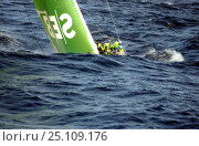 SEB on Leg 8, La Rochelle France to Gothenburg Sweden, during the Volvo Ocean Race, 2001-2002. Стоковое фото, фотограф Rick Tomlinson / Nature Picture Library / Фотобанк Лори