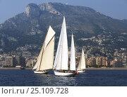 Купить «Classic boats on start line at the Monaco to Cannes Race, Monaco. September 1997.», фото № 25109728, снято 21 августа 2018 г. (c) Nature Picture Library / Фотобанк Лори