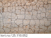 Купить «Cracked dirt road», фото № 25110052, снято 16 августа 2018 г. (c) Сергей Эшметов / Фотобанк Лори
