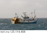 "Купить «Prawn fishing vessel, ""Ocean Reaper"" trawling on the North Sea, May 2004.», фото № 25114408, снято 17 июля 2018 г. (c) Nature Picture Library / Фотобанк Лори"