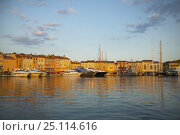 Купить «The water front in St Tropez with private yachts anchored stern to the quay, South of France.», фото № 25114616, снято 7 декабря 2019 г. (c) Nature Picture Library / Фотобанк Лори