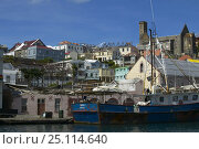 Купить «Fishing boats moored in St George's harbour, Grenada, Caribbean.», фото № 25114640, снято 9 декабря 2019 г. (c) Nature Picture Library / Фотобанк Лори