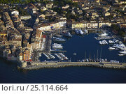 Купить «Superyachts line the harbour in St Tropez, South of France.», фото № 25114664, снято 8 декабря 2019 г. (c) Nature Picture Library / Фотобанк Лори