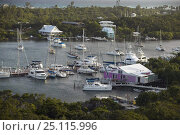 Купить «Boats moored in Hope Town harbour as seen from the Elbow Cay lighthouse, Abacos, Bahamas.», фото № 25115996, снято 9 декабря 2019 г. (c) Nature Picture Library / Фотобанк Лори