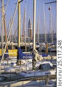 Купить «Campanile di San Marco viewed through boats' masts, Venice, Italy.», фото № 25117248, снято 16 августа 2018 г. (c) Nature Picture Library / Фотобанк Лори