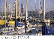 Купить «Campanile di San Marco viewed through boats' masts, Venice, Italy.», фото № 25117404, снято 16 августа 2018 г. (c) Nature Picture Library / Фотобанк Лори