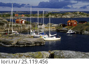 Купить «Small yachts moored up to the rocks in the waters of the Swedish Archipelago.», фото № 25119456, снято 20 сентября 2018 г. (c) Nature Picture Library / Фотобанк Лори