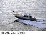 Купить «Little Harbor whisper jet powerboat.», фото № 25119988, снято 20 сентября 2018 г. (c) Nature Picture Library / Фотобанк Лори