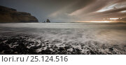 Купить «Sunset at Talisker Bay, Isle of Skye, Scotland, UK, March 2014.», фото № 25124516, снято 21 августа 2018 г. (c) Nature Picture Library / Фотобанк Лори