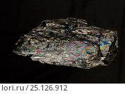 Купить «Anthracite coal, 'peacock rainbow coal' from Schuylkill County, Pennsylvania, USA.», фото № 25126912, снято 16 августа 2018 г. (c) Nature Picture Library / Фотобанк Лори