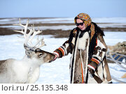 "Купить «Carolina Serotetto, Nenet teenager dressed in traditional winter coat made of reindeer skin with  pet """"akva"""" Reindeer (Rangifer tarandus...», фото № 25135348, снято 19 июля 2019 г. (c) Nature Picture Library / Фотобанк Лори"