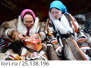 Купить «Two generations of Nenet women, an older woman and teenage girl, sewing and wearing traditional coats made of reindeer skin. Yar-Sale district, Yamal, Northwest Siberia, Russia. April 2016.», фото № 25138196, снято 9 июля 2020 г. (c) Nature Picture Library / Фотобанк Лори