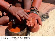 Купить «Himba woman mixing ochre with butter to make Otjize, Marienfluss Valley. Kaokoland, Namibia. October 2015», фото № 25140080, снято 26 мая 2019 г. (c) Nature Picture Library / Фотобанк Лори