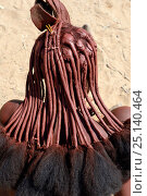 Купить «Himba woman hairstyle with crest known as 'Erembe', indicating that she is married Marienfluss Valley. Kaokoland; Namibia October 2015», фото № 25140464, снято 26 мая 2019 г. (c) Nature Picture Library / Фотобанк Лори