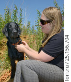 Купить «Emily Howard-Williams with Labrador Tui, who has been trained to sniff out feeding stations visited by Harvest mice (Micromys minutus), Moulton, Northampton, UK, June.  Model released.», фото № 25156704, снято 16 января 2019 г. (c) Nature Picture Library / Фотобанк Лори