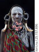 Купить «Portrait of woman from the Mursi tribe, traditionally decorated and painted, wearing a large clay lip plate, Omo Valley, Ethiopia, March 2015.», фото № 25157896, снято 9 июля 2020 г. (c) Nature Picture Library / Фотобанк Лори