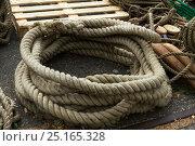 Купить «Detail image of blocks and cordage aboard the Draken Harald Harfagre (Dragon Harald Fairhair), West Float Dock, Birkenhead, Wirral, Merseyside, United...», фото № 25165328, снято 22 мая 2018 г. (c) Nature Picture Library / Фотобанк Лори