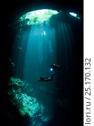 Scuba divers swimming across a curtain of light shining down through the opening of Pit El Cenote, near Tulum, Riviera Maya, Yucatan Peninsula, Mexico. Model released. Стоковое фото, фотограф Brandon Cole / Nature Picture Library / Фотобанк Лори