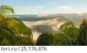 Купить «The rim of Maliau Basin on the horizon, towering above the dense rainforest it encloses. Maliau Basin, Sabah, Borneo, May 2011.», фото № 25176876, снято 19 июля 2019 г. (c) Nature Picture Library / Фотобанк Лори
