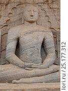 Купить «Buddha carving at Gal Vihara rock temple, Polonnaruwa, Sri Lanka.», фото № 25177312, снято 20 августа 2018 г. (c) Nature Picture Library / Фотобанк Лори