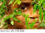 Купить «Child with traditional hat made ??of leaves. Tanna Island, Tafea Province, Vanuatu, September 2008.», фото № 25178584, снято 9 июля 2020 г. (c) Nature Picture Library / Фотобанк Лори