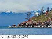Купить «Ushkanyi islands, breeding grounds of the Baikal seal (Pusa sibirica). Baikals ridge visible beyond. Lake Baikal, Russia, May 2012.», фото № 25181576, снято 24 августа 2019 г. (c) Nature Picture Library / Фотобанк Лори