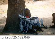 Купить «Village elder resting under acacia tree with  bottle of milk, rural Chad, 2002-2003.», фото № 25182040, снято 16 августа 2018 г. (c) Nature Picture Library / Фотобанк Лори