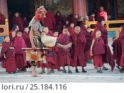 Купить «Young monks watching Zamcham (one of the monastic dances). The performers in this dance wear wrathful masks and the dance is performed to safeguard the...», фото № 25184116, снято 15 августа 2018 г. (c) Nature Picture Library / Фотобанк Лори