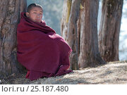 Купить «Young monk watching rehearsal of dances in preparation for the Torgya festival. Galdan Namge Lhatse Monastery, Tawang, Arunachal Pradesh, India. January 2014.», фото № 25187480, снято 15 августа 2018 г. (c) Nature Picture Library / Фотобанк Лори