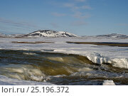 Купить «Rapids and snowy habitat, Wrangel Island, Far Eastern Russia, May 2011.», фото № 25196372, снято 18 ноября 2019 г. (c) Nature Picture Library / Фотобанк Лори