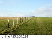 Купить «Fence line dividing two grassland pastures and disappearing over the horizon. Mendip Hills, Somerset, UK, December.», фото № 25200224, снято 23 марта 2018 г. (c) Nature Picture Library / Фотобанк Лори