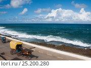 Купить «Horse drawn taxi and pedi-taxi along the seafront, Baracoa, Guantanamo Province, Eastern Cuba, November 2011.», фото № 25200280, снято 12 ноября 2019 г. (c) Nature Picture Library / Фотобанк Лори